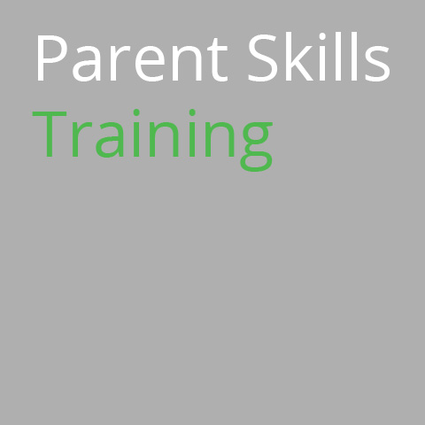 Parent Skills Training